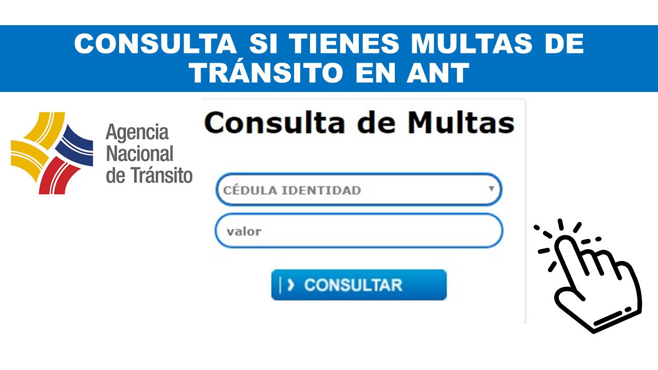 Consulta si tienes multas de tránsito en ANT Ecuador