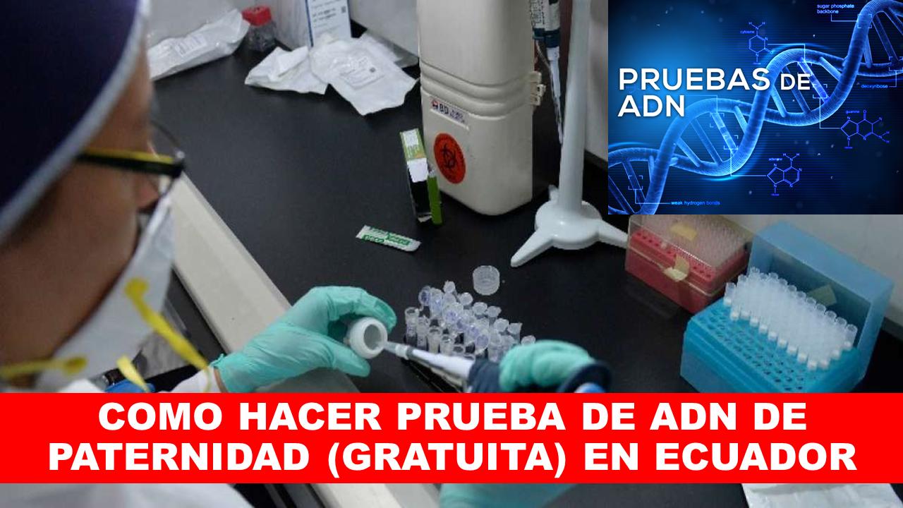 COMO HACER PRUEBA DE ADN DE PATERNIDAD (