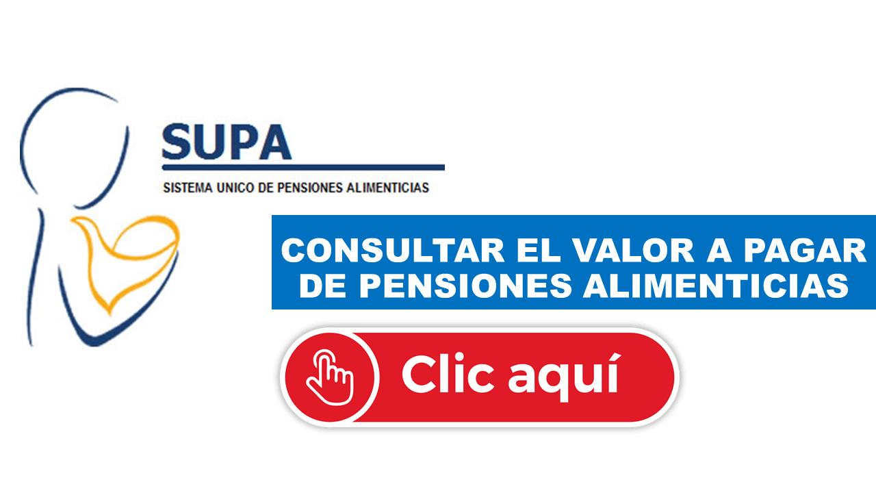 Consultar el valor a pagar de pensiones alimenticias